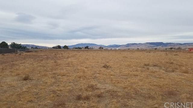 0 258th St W Near Taney Ave, Neenach, CA 93536 (#SR21008094) :: Swack Real Estate Group   Keller Williams Realty Central Coast