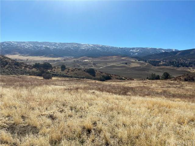 8201 Vac/Elizabath Lake Rd/Vic80ths, Leona Valley, CA 93551 (#SR21019614) :: The Alvarado Brothers