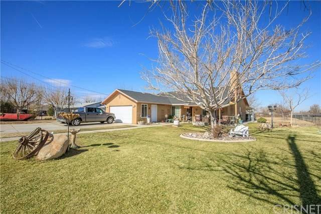 10057 E Avenue S4, Littlerock, CA 93543 (#SR21021304) :: Power Real Estate Group