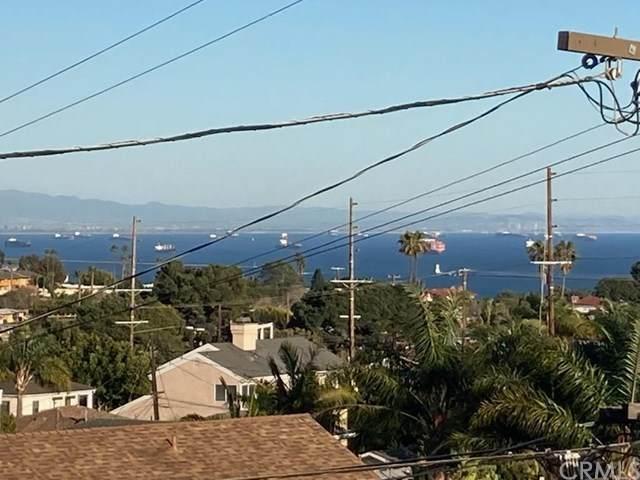 2646 S Patton Avenue, San Pedro, CA 90731 (#SB21028209) :: Power Real Estate Group