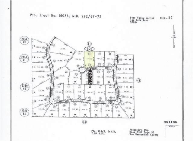 1315 Shadowhill Court, Big Bear, CA 92314 (#CV21033677) :: Millman Team