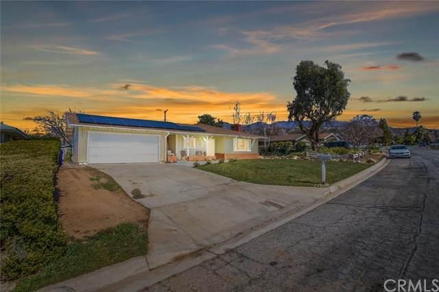 35416 Cabrini Drive - Photo 1
