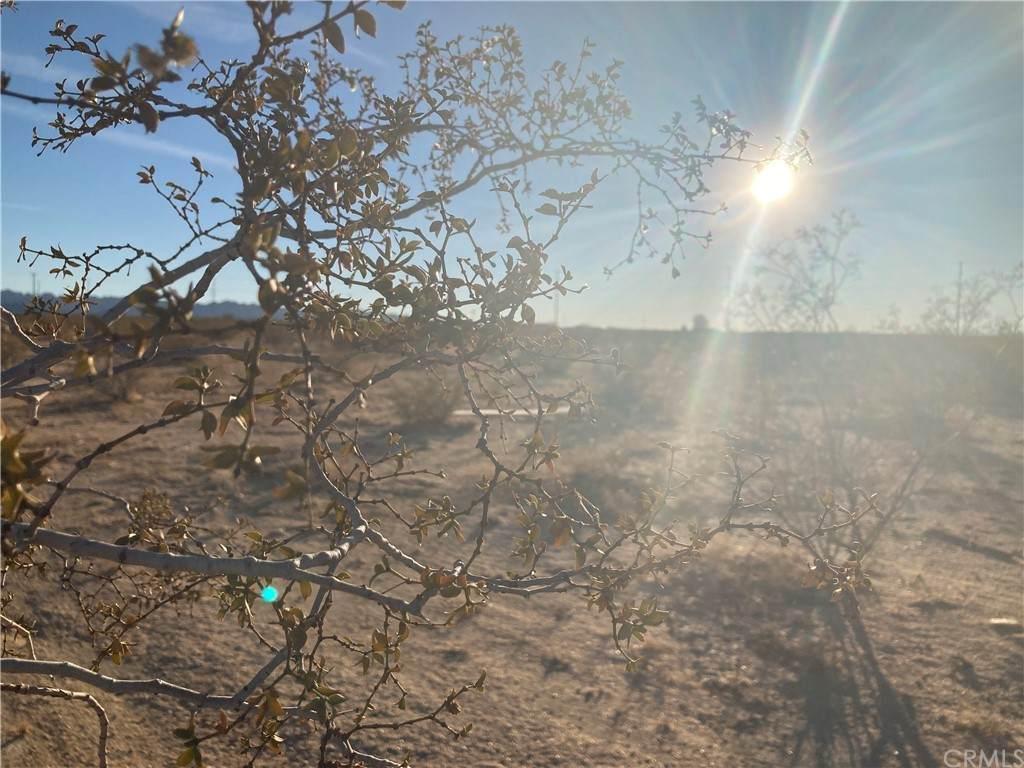 1 Sunny Sands - Photo 1