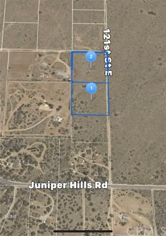 0 Vac/121 Ste/Vic Juniper Hills Road, Littlerock, CA 93543 (#IV21046987) :: Koster & Krew Real Estate Group | Keller Williams