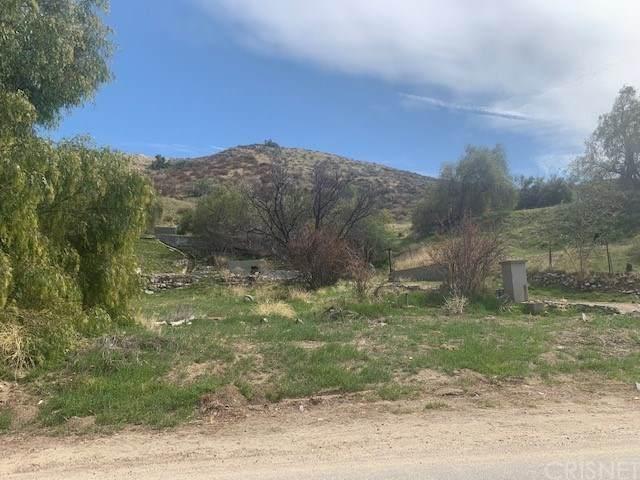 0 Scherzinger, Canyon Country, CA 91387 (#SR21057258) :: Zen Ziejewski and Team