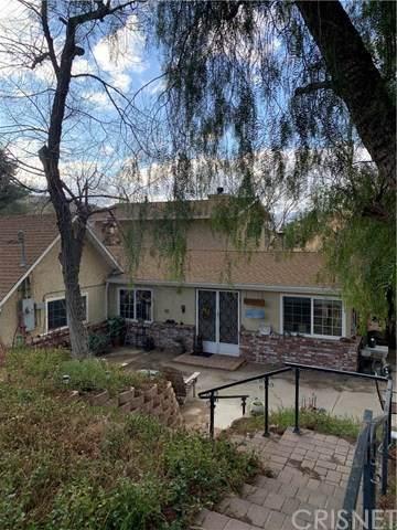 32530 Agua Dulce Canyon Road, Agua Dulce, CA 91390 (#SR21058110) :: Wendy Rich-Soto and Associates