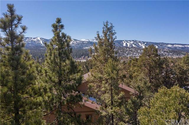 1105 Crater Mountain, Big Bear, CA 92314 (#PW21057111) :: Go Gabby