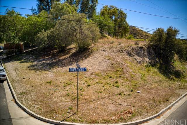 1 Scherzinger Lane, Canyon Country, CA 91387 (#SR21061690) :: The Brad Korb Real Estate Group