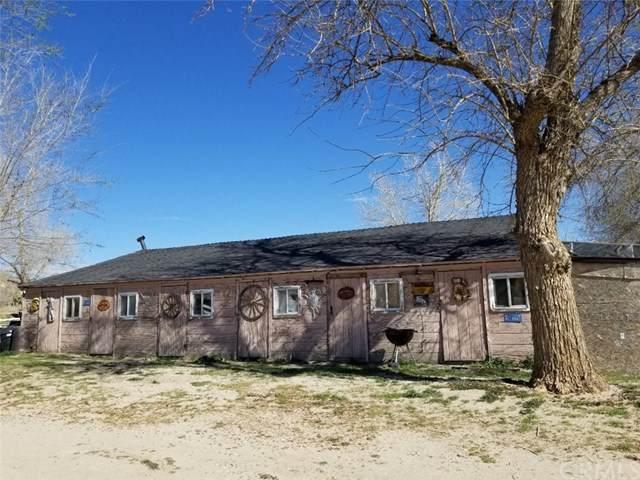 6688 Jadestone Road A-B, Phelan, CA 92371 (#RS21067108) :: Koster & Krew Real Estate Group | Keller Williams