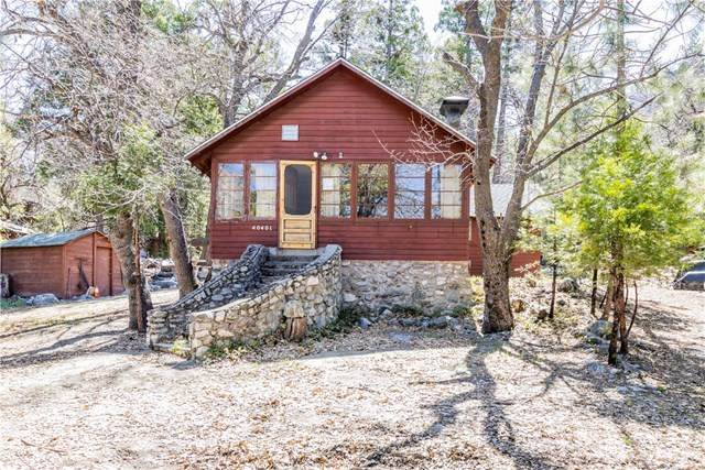 40401 Valley Of The Falls Drive, Forest Falls, CA 92339 (#EV21074213) :: The Costantino Group | Cal American Homes and Realty