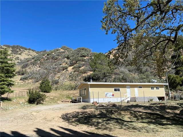 917 Canyon Drive, Lebec, CA 93243 (#SR21078957) :: Wahba Group Real Estate   Keller Williams Irvine
