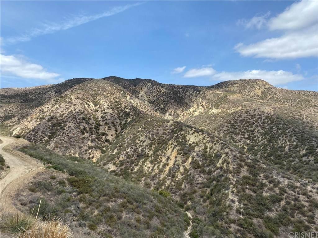 0 Burlwood Dr, Castaic, CA 91387 (#SR21080366) :: Berkshire Hathaway HomeServices California Properties