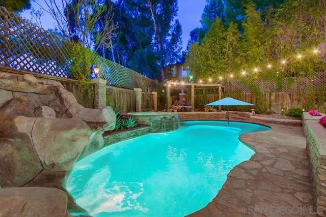 1793 Kyrsten Terrace Ct, Alpine, CA 91901 (#210011257) :: Mainstreet Realtors®