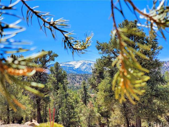 0 Ponderosa Ranch Road, Big Bear, CA 92314 (#PS21095819) :: Swack Real Estate Group | Keller Williams Realty Central Coast