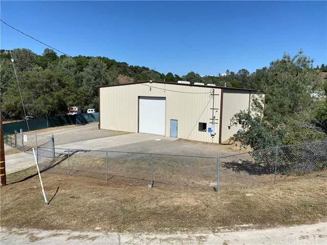 4995 Gold Leaf Drive, Mariposa, CA 95338 (#MP21096472) :: Mainstreet Realtors®