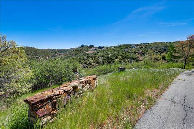 0 Iron Springs Way, Julian, CA 92036 (#IV21098739) :: Power Real Estate Group