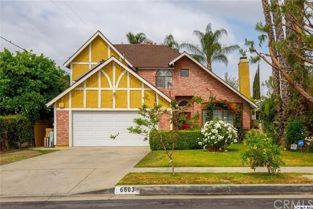 6603 Lasaine Avenue, Lake Balboa, CA 91406 (#320006039) :: Team Forss Realty Group