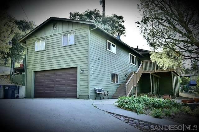 28943 Manzanita Trail, Pine Valley, CA 91962 (#210012903) :: Power Real Estate Group