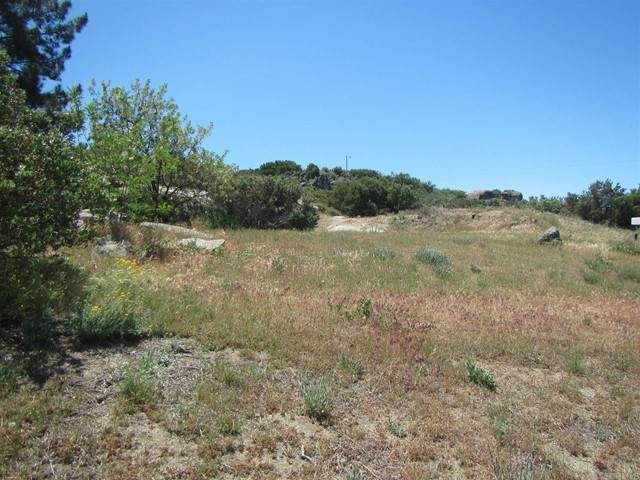 Building site Canadian Honker, Campo, CA 91906 (#PTP2103355) :: Powerhouse Real Estate