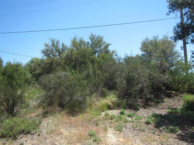 4 lots Yucca, Campo, CA 91906 (#PTP2103375) :: Powerhouse Real Estate