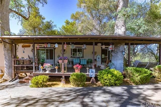 4061 Buckeye Road, Mariposa, CA 95338 (#FR21108891) :: Twiss Realty