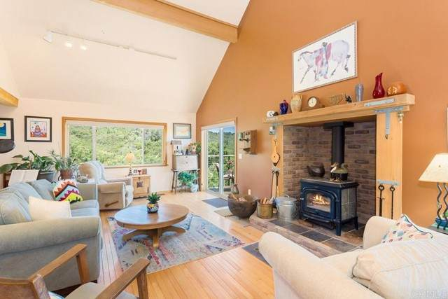 25770 East Grade Road, Santa Ysabel, CA 92070 (#NDP2106055) :: Eight Luxe Homes