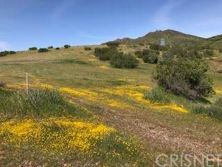 0 Vac/Davenport Rd/Vic Haskett Road, Agua Dulce, CA 91350 (#SR21120609) :: The Marelly Group | Sentry Residential