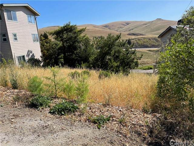 0 London Lane, Cambria, CA 93428 (#SC21123229) :: The Marelly Group | Sentry Residential
