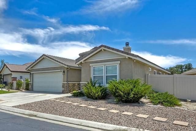 32123 Evening Primrose Trail, Campo, CA 91906 (#NDP2106576) :: Wahba Group Real Estate | Keller Williams Irvine