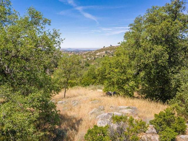 Lot 53 Mountainbrook Road, Santa Ysabel, CA 92070 (#NDP2106615) :: Eight Luxe Homes