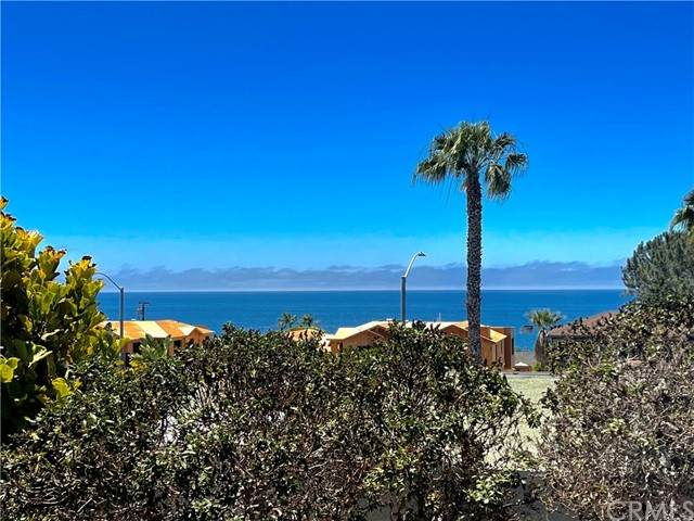224 Viejo Street, Laguna Beach, CA 92651 (#LG21125051) :: Eight Luxe Homes