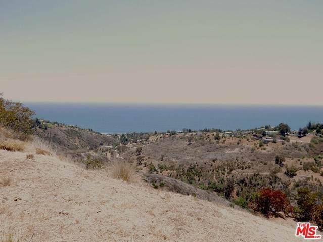 0 Coal Canyon Road, Malibu, CA 90265 (#21748698) :: Legacy 15 Real Estate Brokers