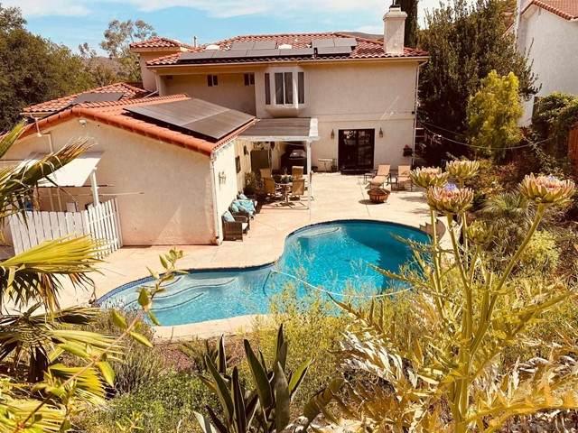 24311 Watt Rd, Ramona, CA 92065 (#210016474) :: Berkshire Hathaway HomeServices California Properties