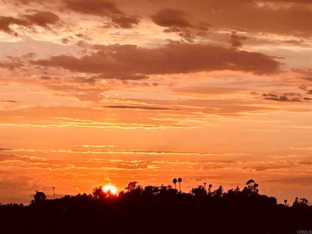 866 Via La Venta, San Marcos, CA 92069 (#NDP2107164) :: Wendy Rich-Soto and Associates