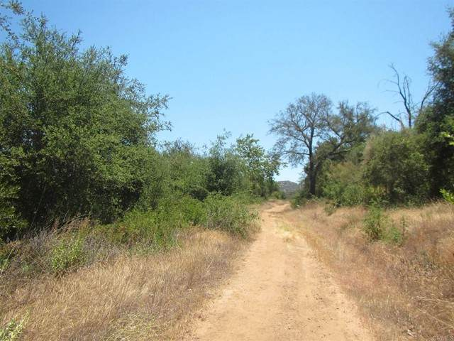 187 ACRES Lawson Valley Rd - Photo 1