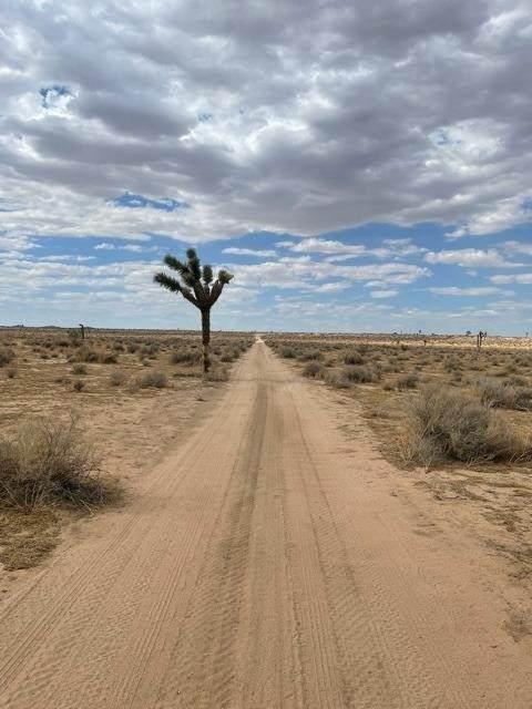 0 Buckthorne Cyn #3 Road - Photo 1