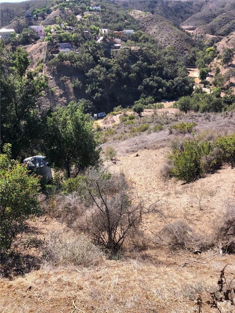 0 Latigo Canyon Road - Photo 1