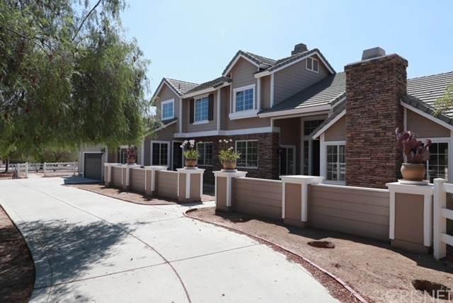 35055 Caprock Road, Agua Dulce, CA 91390 (#SR21167477) :: Legacy 15 Real Estate Brokers