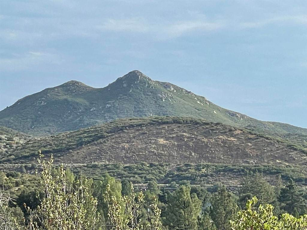 Paseo Al Monte - Photo 1