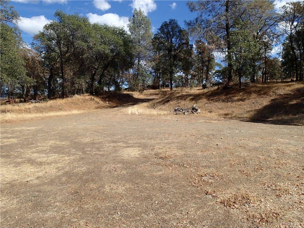 424 Gold Mountain Road - Photo 1