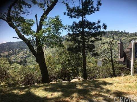 3338420 Grass Valley Road - Photo 1