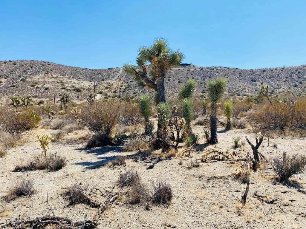 57800 Mountain View Trail - Photo 1