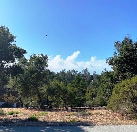 1845 Richard Avenue, Cambria, CA 93428 (#SC21234480) :: Steele Canyon Realty
