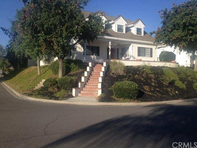 23201 Pretty Doe Drive, Canyon Lake, CA 92587 (#IG17139560) :: California Realty Experts