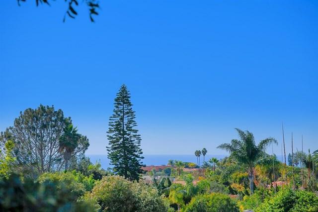 1609 Caminito Asterisco, La Jolla, CA 92037 (#180062882) :: Go Gabby