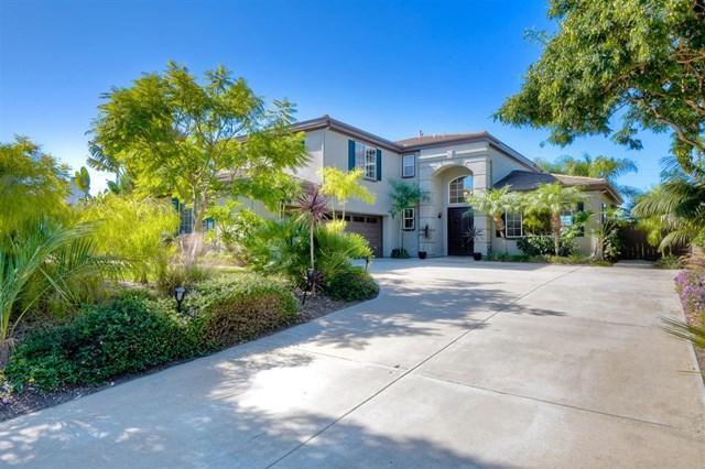 1419 Arbor Ct, Encinitas, CA 92024 (#180063558) :: Mainstreet Realtors®
