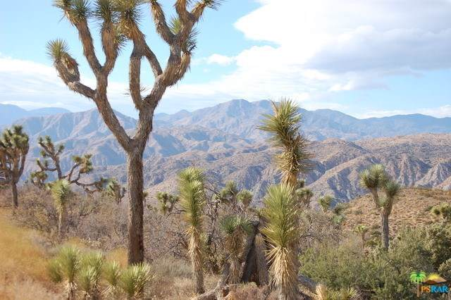0 Section 31 Water Canyon, Yucca Valley, CA 92284 (#19428124PS) :: Z Team OC Real Estate