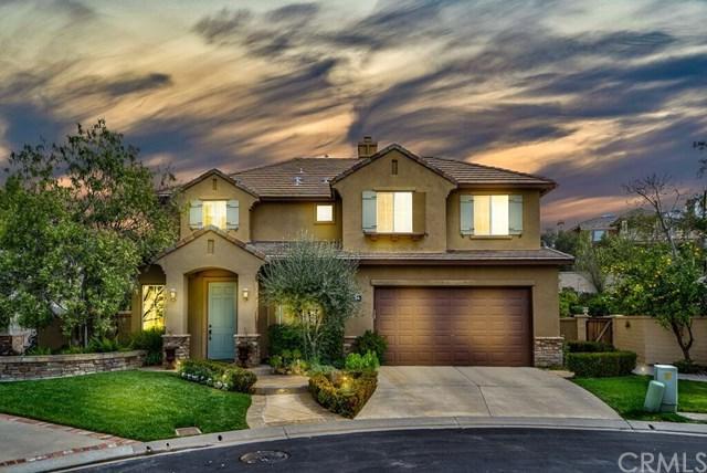 14 Coastal Oak Lane, Coto De Caza, CA 92679 (#OC19047846) :: Doherty Real Estate Group