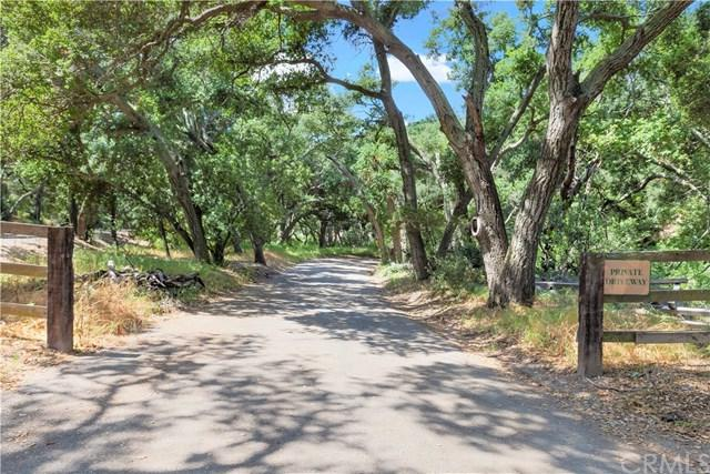 19411 Live Oak Canyon Road, Trabuco Canyon, CA 92679 (#NP19094484) :: Legacy 15 Real Estate Brokers