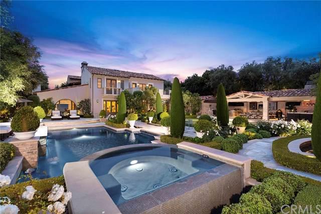 23 Tide Watch, Newport Coast, CA 92657 (#OC19099645) :: Allison James Estates and Homes